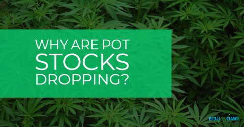 Jeff Sessions resigned so why are Pot Stocks dropping?